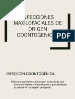 Infecciones Odontogenicas I