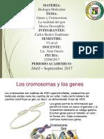 cromosomasygenes-091202181052-phpapp01.ppt