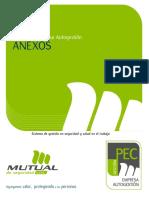 Autogestion Mutual.pdf