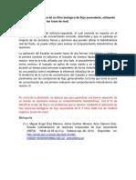Análisis Hidrodinámico de Filtro Biológico de Flujo Ascendente