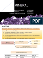 PPT Mineral Fiks