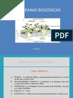 MembranasBiológicas-1