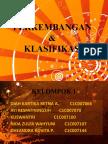 Perkembngan Dan Klasifikasi Akuntansi Internasional