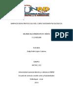 Mapa de Ideas Protocolo Del Curso