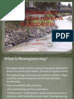 Bio-Engineering Technique for Bank Stabilization