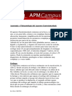 61 Anatomia Aparato Gastrointestinal Prof Vietto