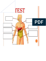 test aparato digestivo y respiratorio