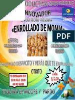 Presentacion Del Afiche Mollvale