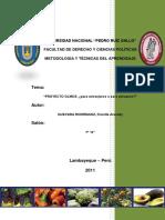 244417723-Proyecto-Olmos-Monografia.pdf