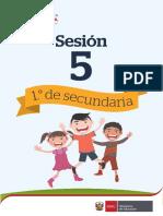 sec1-sesion5.pdf