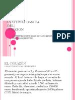Anatomia Basica Del Corazon (1)