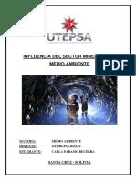 Influencia Del Sector Minero en El Medio Ambiente