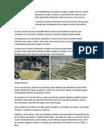 LOGROS DE LOS INCAS.docx
