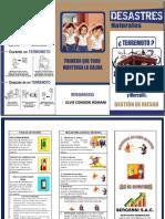 2. GESTION DE PROYECTOS TRIPTICO.docx