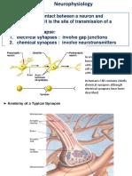 Neurophysiology 1