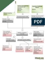 Pathophysiology Hypokalemia