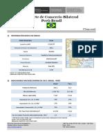 Información Básica de BRASIL