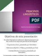 Principios Linguisticos