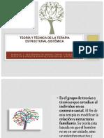 9. Teoría y Técnica de La Terapia Estructural Sistémica 122 Abril17