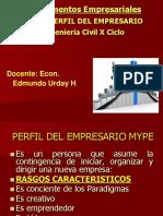 Perfil Del Empresario Mype 2