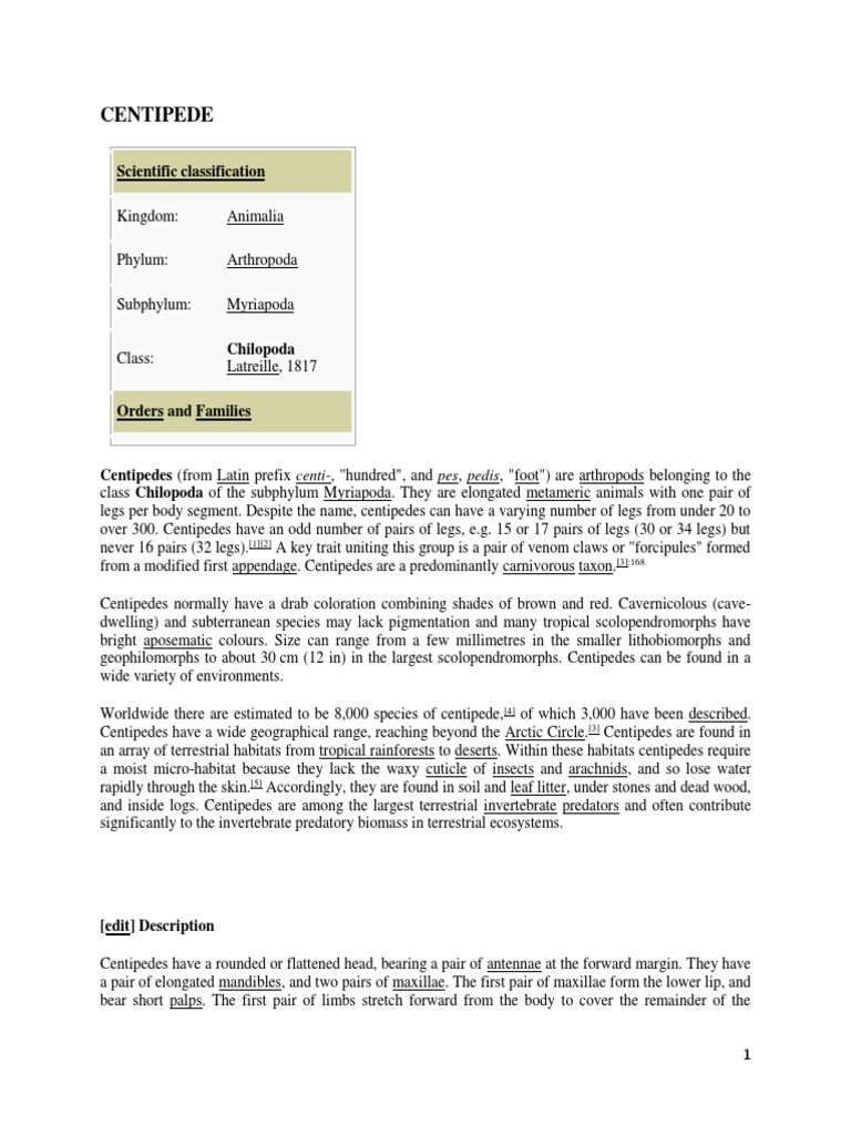 3 SKEINS HIMALAYA RHYTHM YARN CREAM 3.5 OZ 179 YDS  EA 100/% ACRYLIC
