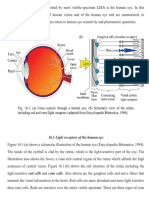 9.Eye and Photometry