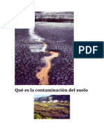 contaminacion de los suelos.docx