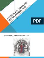 Anatomi Dan Fisiologi Sistem Perkemihan