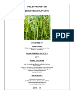 Drumstick_Farming-07_07_2018_05_07