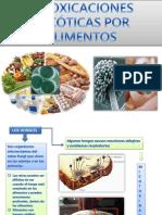 Intoxicaciones Micoticas Por Alimentos