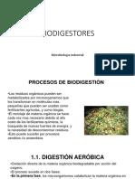 20. BIODIGESTORES.1