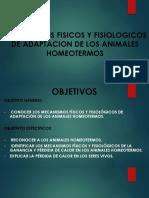 Mecanismos Fisicos y Fisiologicos de Adaptacion de Los