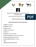 Extraccion de ADN LAB 4 Luis