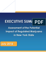 Executive Summary 07-13-18