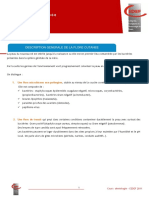 CEDEF_Flore cutanee (1).pdf