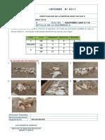 Informe n 0017 Mortalidad Chilco x El 19 Jun