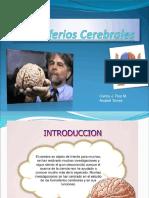 Los DOS Hemisferios Cerebrales___en 24 Láminas de Ppt ..