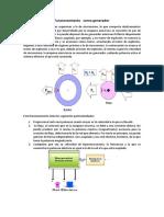 Motor Asincrono Funcionamiento Como Generador (1)