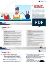 2.8_SST_Sector Pesca (1).pdf