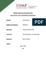 Informe Jurídico de Expediente Penal Robo Agravado Mery Ann