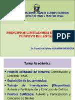 I. Principios Limitadores
