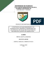 Fretel Huayta Jhonatan (Créditos de Las Cajas Municipales y Su Incidencia en El Desarrollo Empresarial de Las Mypes Del Sector de Rectificaciones de Motores en El Distrito de Amarilis 2018)