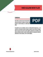 Román-Meyer-Falcón.pdf