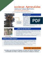 Leccion Aprendida Accidente Significativo Codensa - B&J 21022017
