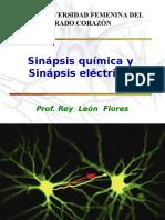 Clase 6 Sinapsis y Neurotransmision