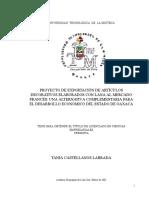 DESPROTEGIDO-1.docx