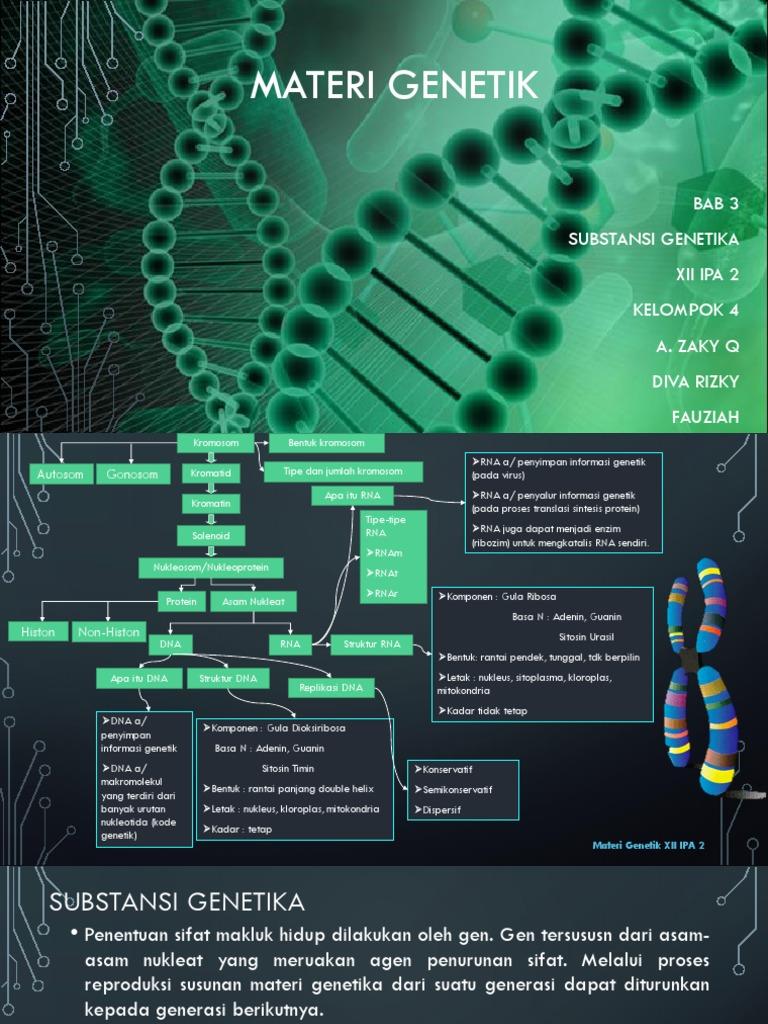 Gambar Molekul Dna 2021