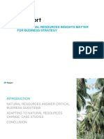 Why_Natural_Resources_Insights_Matter_for_Business_Strategy.pdf
