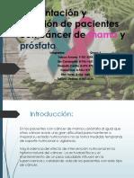 alimentacion y nutrición al paciente con cáncer de mama y poróstata
