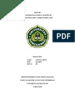 Resume Ips